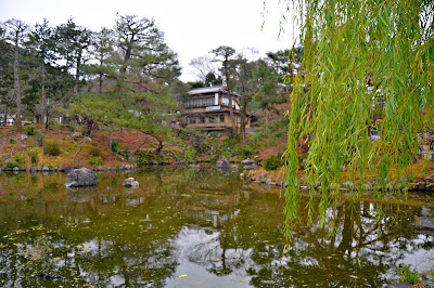 Maruyama Park is one of the must-visit parks in Kyoto during spring and autumn. The Weeping Cherry tree is a must see.