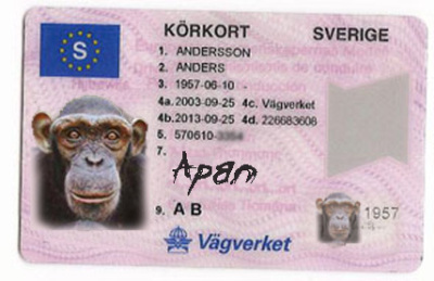 körkort som pass inom eu