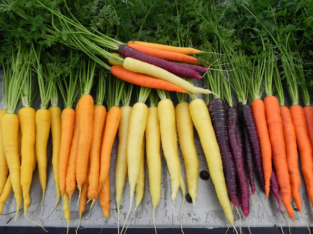 disease can cure using carrot