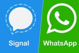 تحميل تطبيق signal2021 المنافس لتطبيق whatsapp