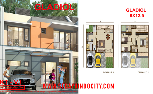 GLADIOL 8X12,5