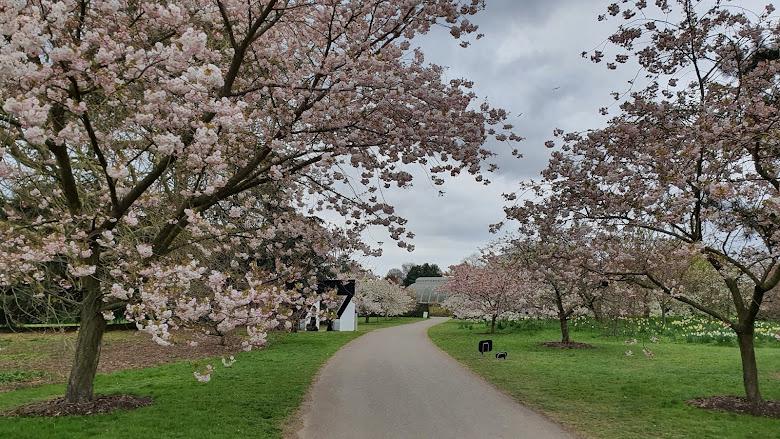 04-10 Kew Gardens
