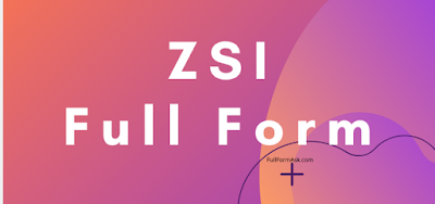 ZSI full meaning