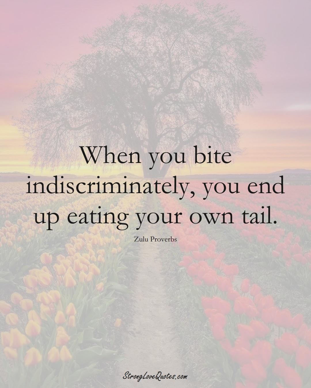 When you bite indiscriminately, you end up eating your own tail. (Zulu Sayings);  #aVarietyofCulturesSayings