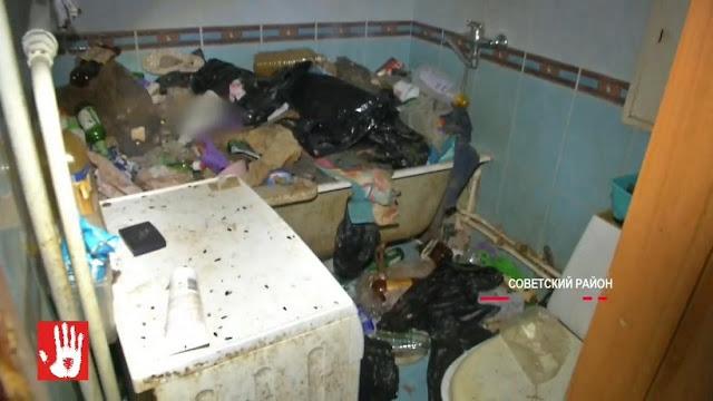 Жительница Челябинска заперла дома 40 кошек и ушла в глубокий запой на два месяца: половина животных погибла