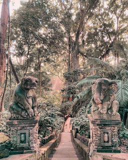 Wisata Ubud Monkey Forest Bali