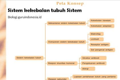 Sistem kekebalan tubuh Sistem