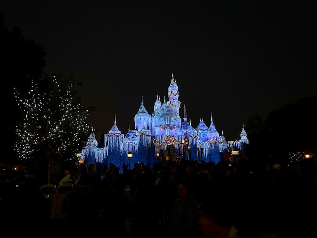Sleeping Beauty's Caste during Christmas time