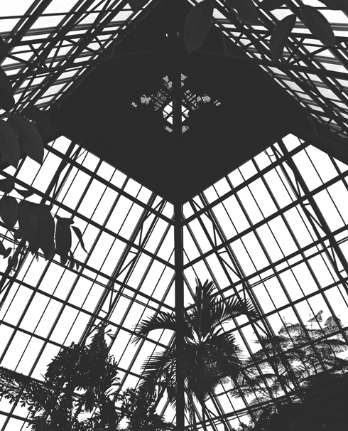 Muttart Conservatory Inside Explore Edmonton