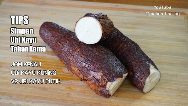 perbezaan ubi kayu kuning dan ubi kayu putih, jenis ubi kayu,cara simpan ubi kayu supaya tahan lama, variasi ubi kayu, petua dapur,tips dapur lina pg,