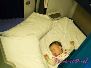 加州微風號茉莉睡覺中