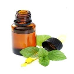 mint oil to get rid of rats naturally