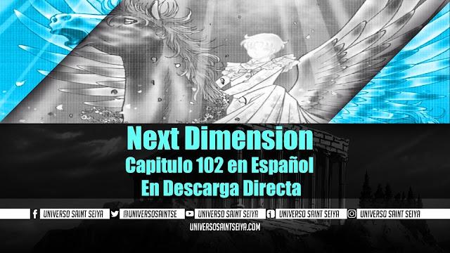 Next Dimension Capitulo 102 en Español