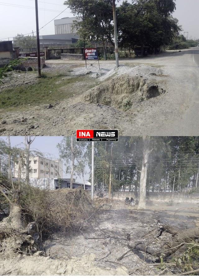 वन विभाग के अधिकारी जलवा रहे हैं रोड के किनारे हरेभरे पेड