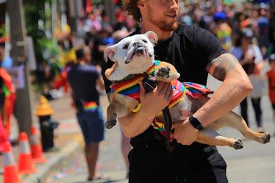2019 Boston Pride parade