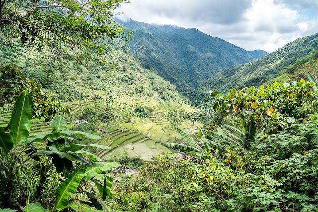 Maga-Ifugao-Luçon-Philippines
