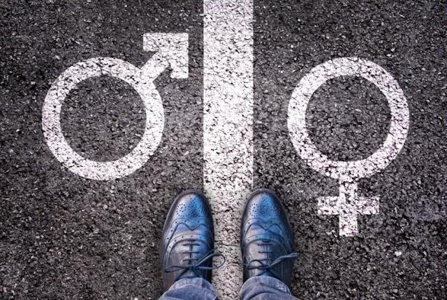 Svédországban központilag erőltetik rá a társadalomra a genderelméletet - videó