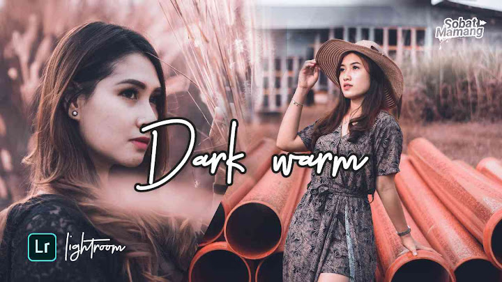 Download Preset Dark Warm Lightroom XMP & DNG