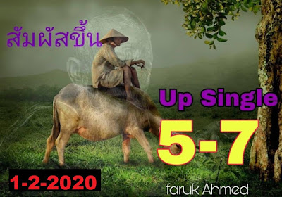 Thailand Lotto 3up Direct Review Facebook Timeline 01 Febuary 2020