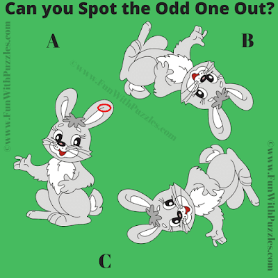 Answer of Picture Riddle Brain Teaser