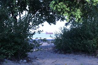 Blick durch Bäume und Sträucher Richtung Meer, wo ein Piratenschiff fährt