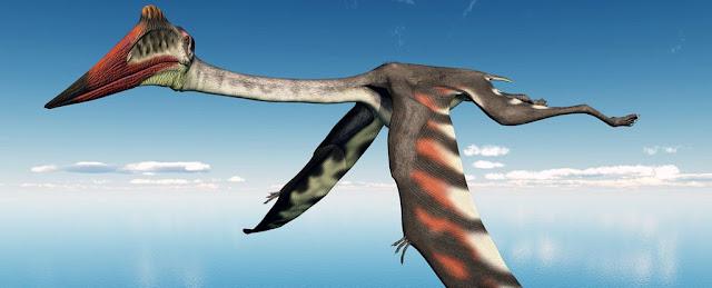 Pterossauro do tamanho de um avião é descoberto na Mongólia