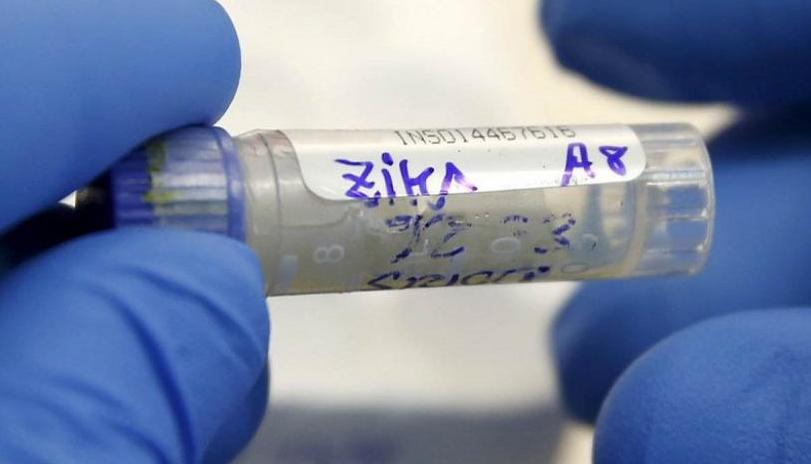 O vírus Zika se espalhou pelo Brasil, mas taxas extremamente altas de microcefalia foram registradas apenas no nordeste do país. Embora as evidências sugiram que o zika pode causar microcefalia,