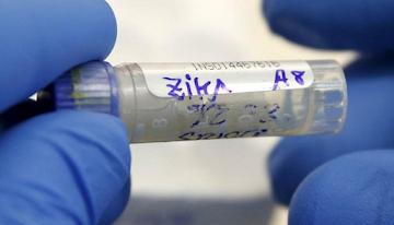 Você sabia que o vírus Zika é patenteado? Adivinha quem é dono
