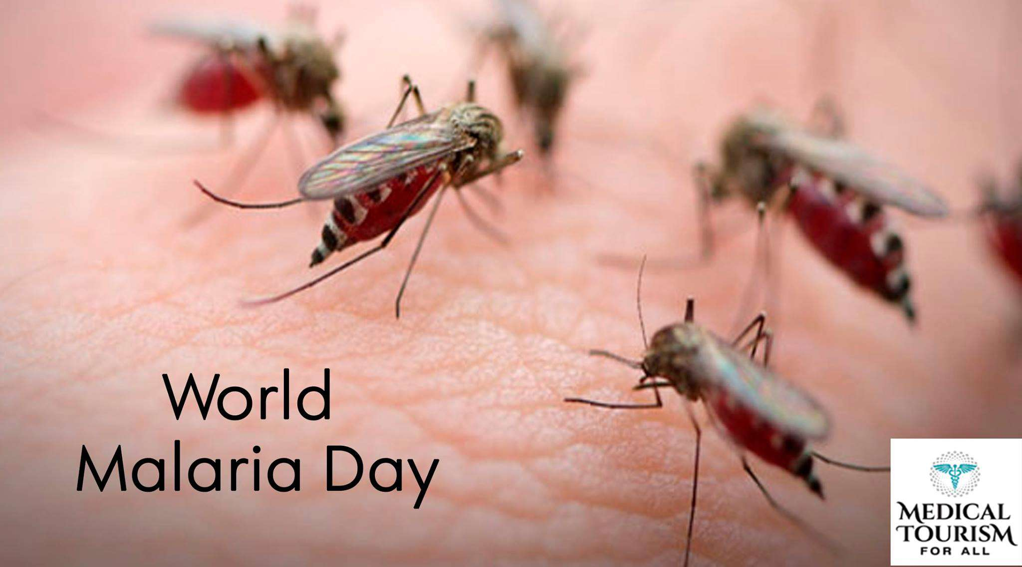 World Malaria Day Wishes Beautiful Image