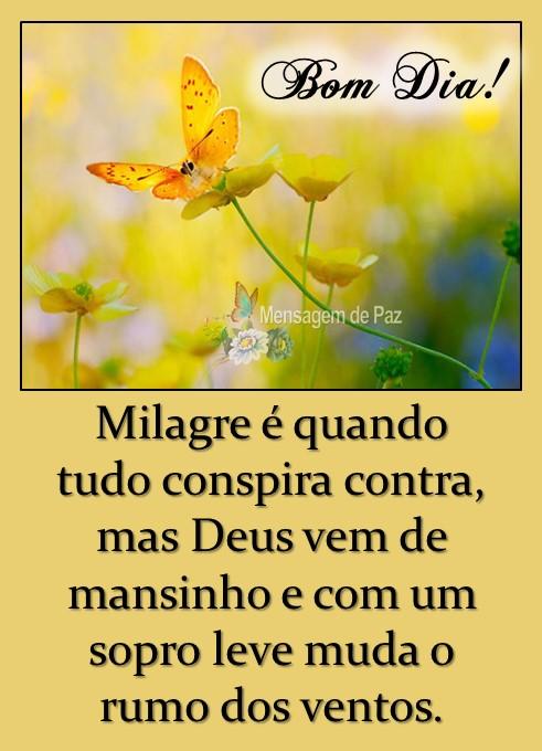 Milagre é quando   tudo conspira contra,   mas Deus vem de   mansinho e com um   sopro leve muda o   rumo dos ventos.  Bom Dia!