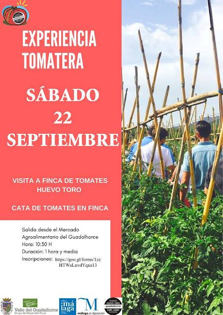 Experiencia Tomatera en Coín