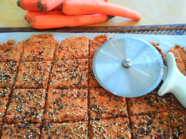 Homemade Crunchy Carrot Juice Pulp Crackers