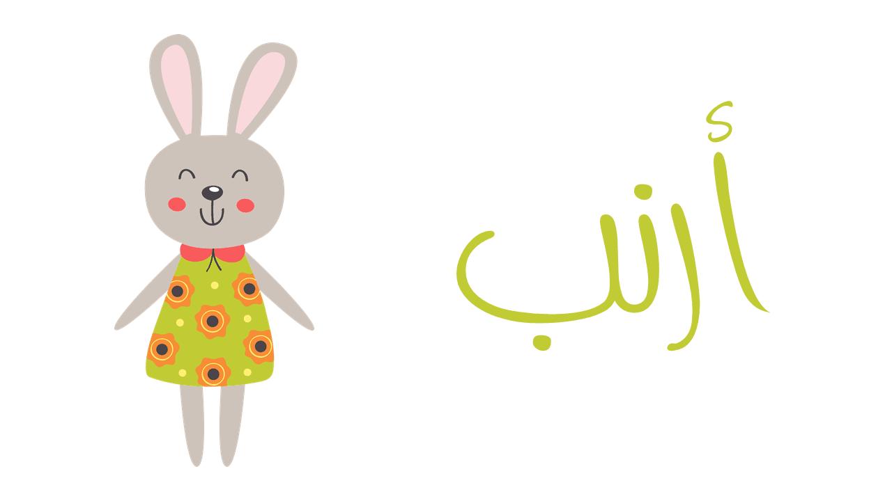 بوربوينت عن أرنب لرياض الأطفال