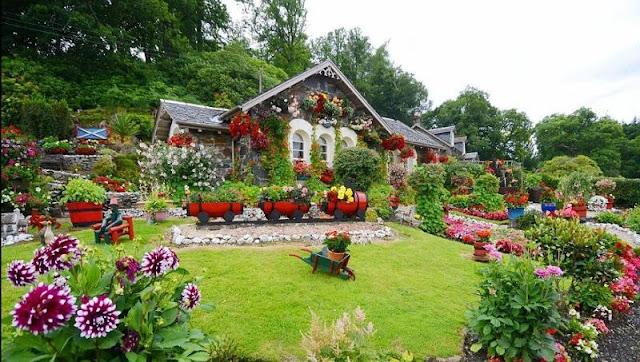 Taman bunga rumah