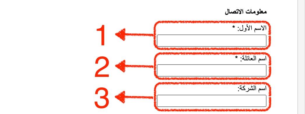 خانات من نموذج الإبلاغ عن حقوق الطّبع والنّشر محاطة بمستطيلات حمر للإشارة