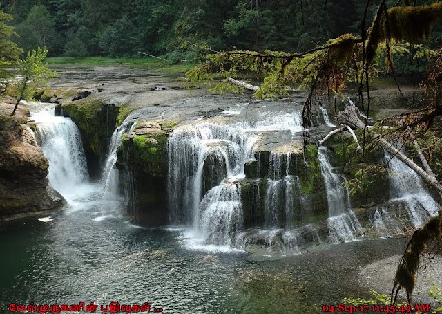 Lower Falls Washington