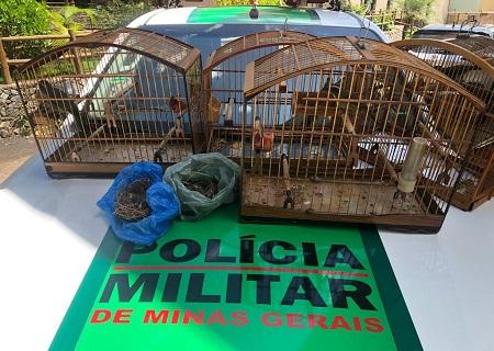 http://www.jornalocampeao.com/2019/11/dois-sao-presos-por-crime-ambiental-em.html