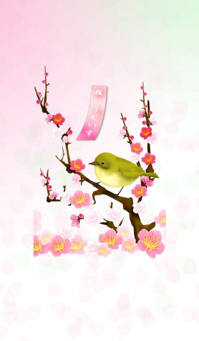 Plum blossom -UGUISU-