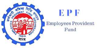 How to check PF, How to view PF online?  What is the PF check number?  What EPFO?  How to view PF passbook? How to create PF account password ?, PF