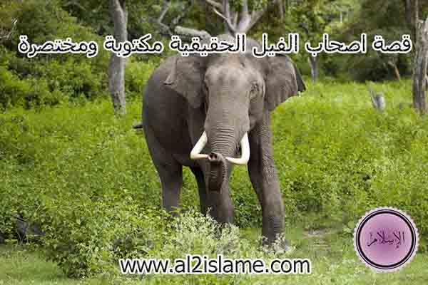 قصة اصحاب الفيل الحقيقية مكتوبة ومختصرة