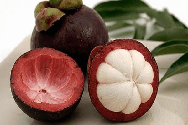 Jurus 5 + Obat Alami Kulit Manggis untuk Diabetes