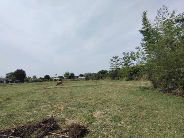 ขายที่นา ที่ดิน ที่ทำการเกษตร 4 ไร่ 2 งาน 6.7 ตารางวา จังหวัดลำปาง ทุ่งบ่อแป้น ตำบลปงยางคก อำเภอห้างฉัตร