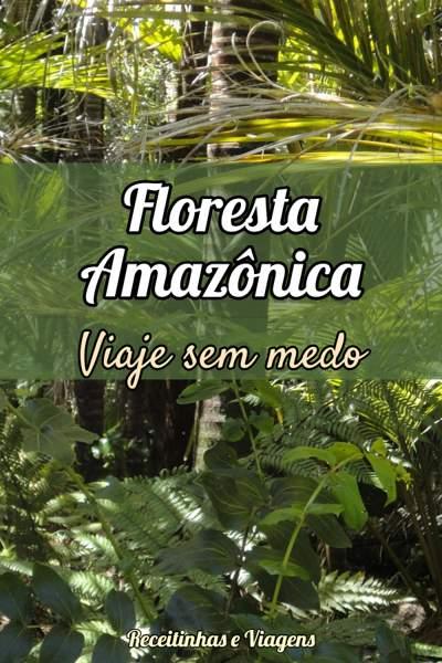 Como fazer uma viagem para a Amazônia sem medo