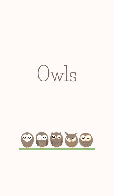 Owls Theme