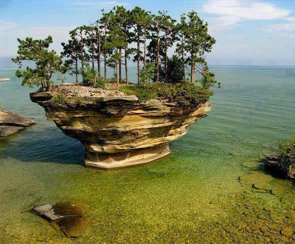 Natureza | Nature