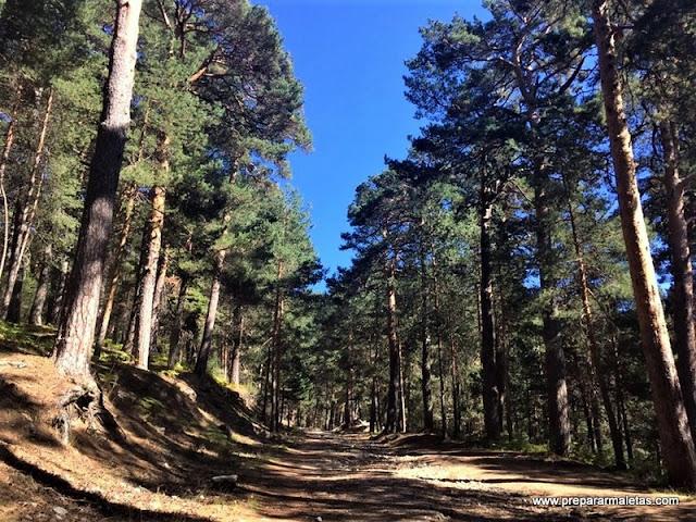 rutas de senderismo por Cercedilla en Madrid