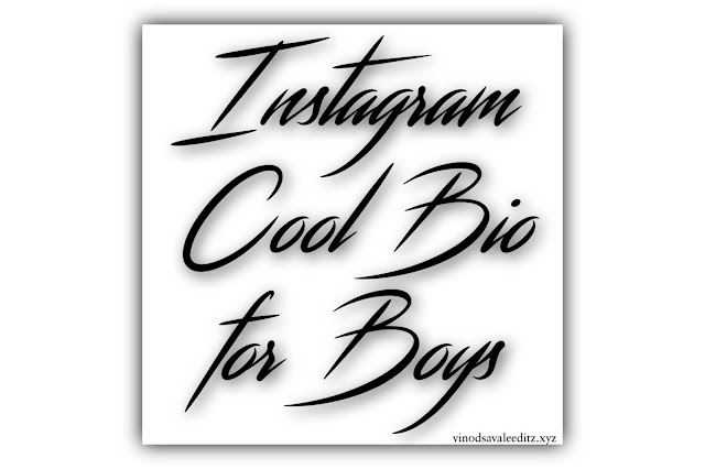 Top 10 Best Instagram Bio for Boys