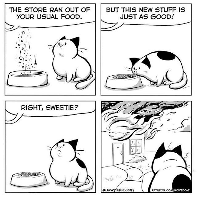ilustrasi komik kucing