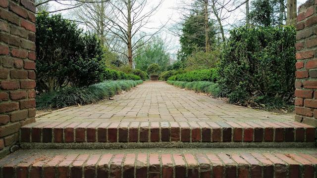 Національний дендрарій США, Вашингтон, округ Колумбія (United States National Arboretum, Washington, D.C)