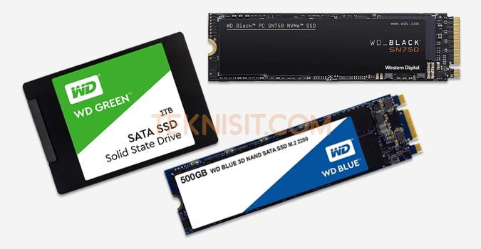 SSD yang bagus